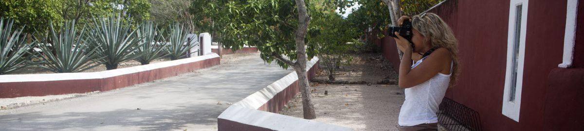 Picture courtesy of Sandra Salvado' - Location Hacienda Temozon