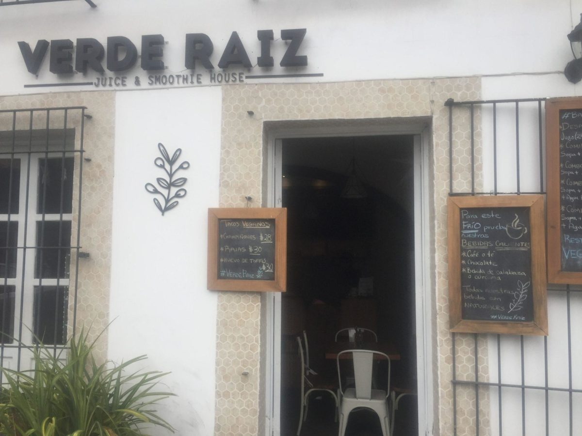 Vegan in Xalapa