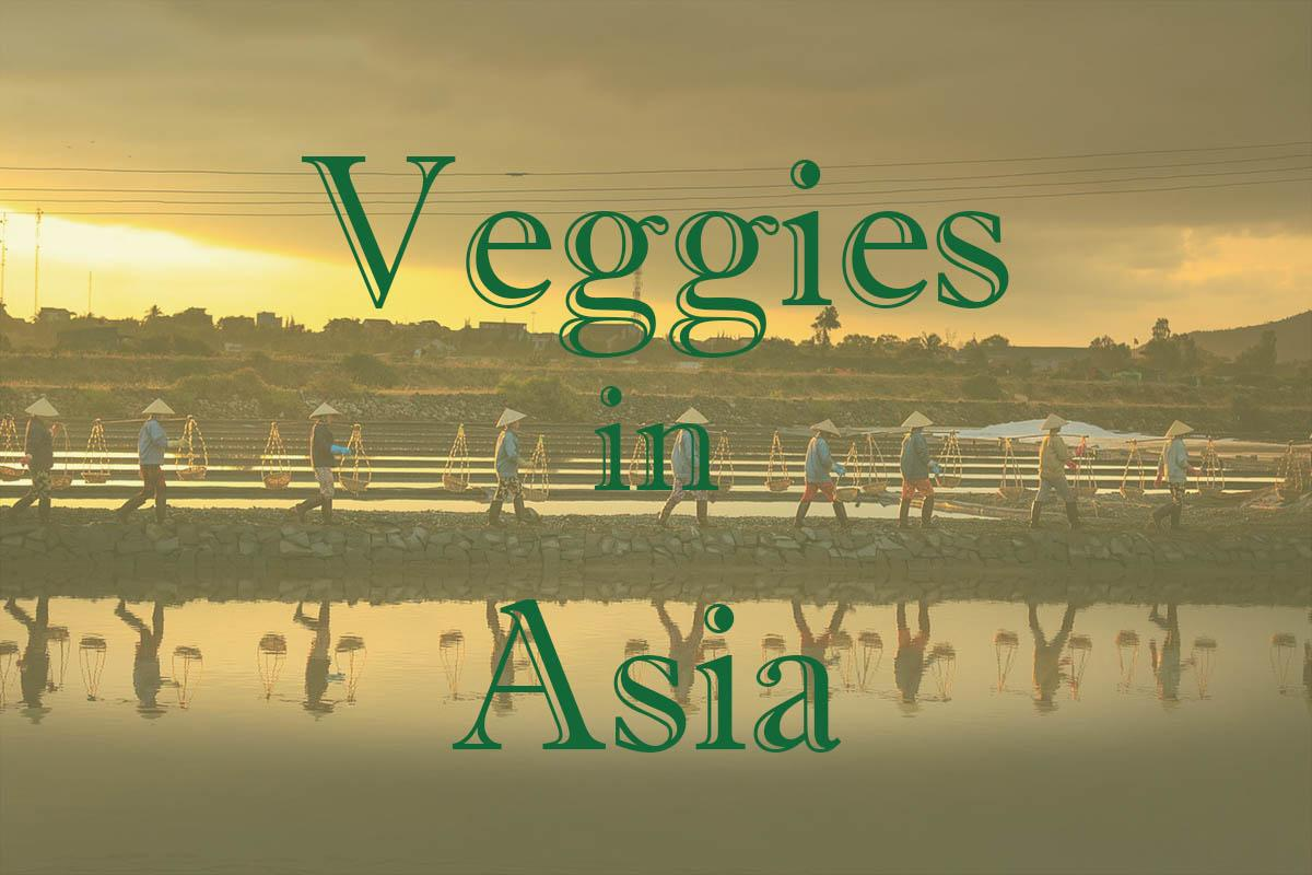 Veggies in Asia - Boundless Roads
