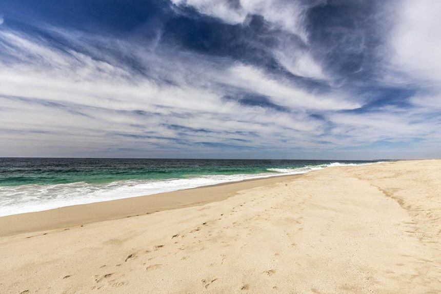 THINGS TO DO IN TODOS SANTOS MEXICO