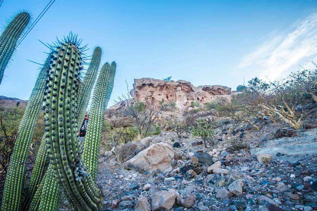 La Paz -Baja California Sur - Boundless Roads