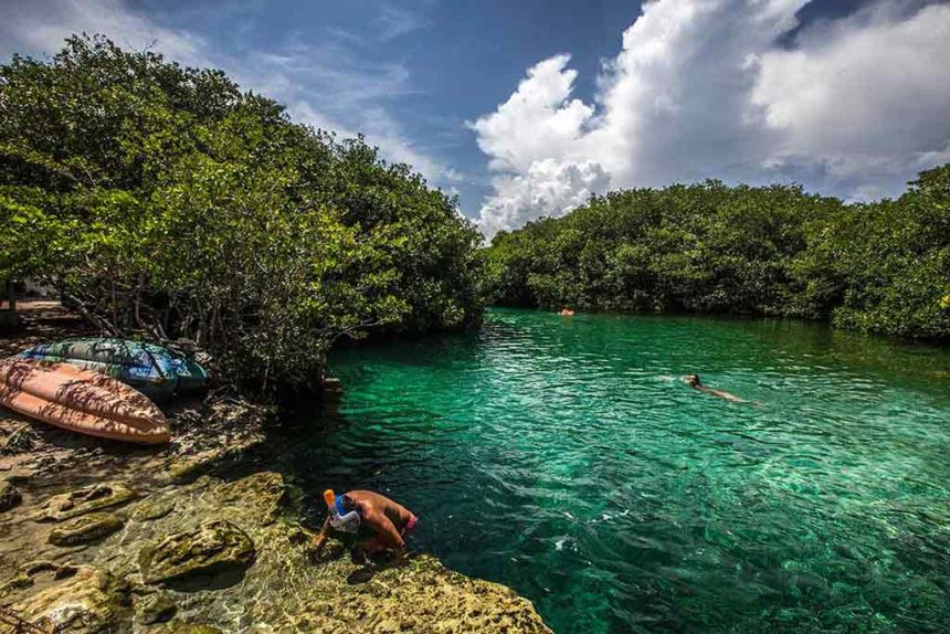 emerald green lake surrounded by mangroves a guy climbing up the stair