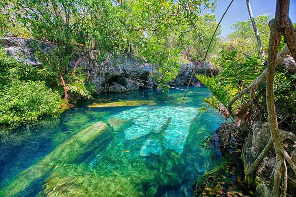 Cenotes de la riviera maya - Boundless roads