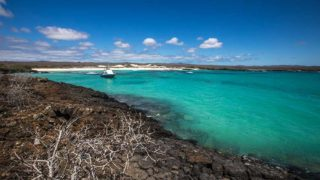 Galapagos islands Vacations - Boundless Roads