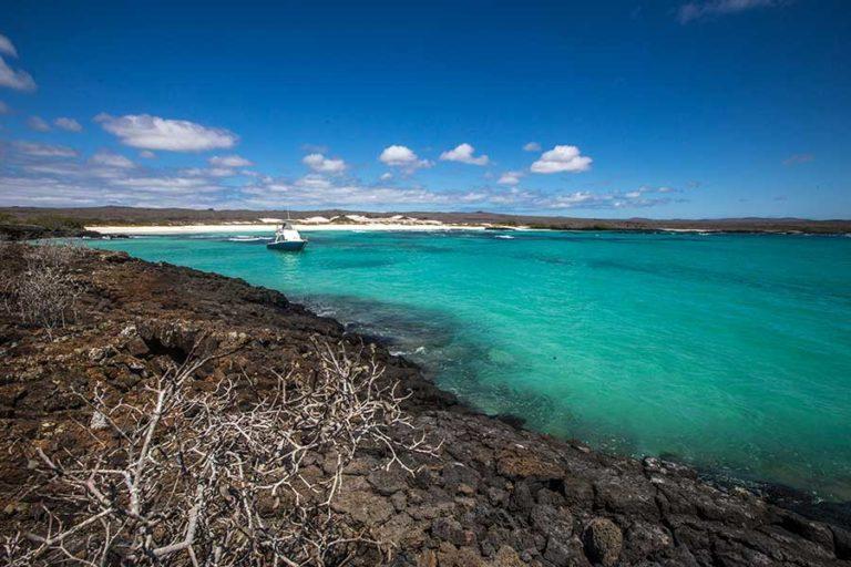 13 amazing Galapagos Islands Cruises
