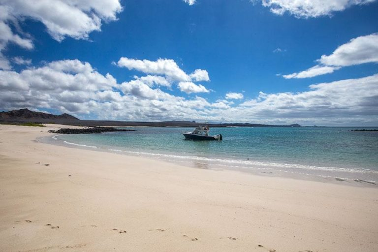 Eden Galapagos cruises – 6 multi-day itineraries for  any budgets