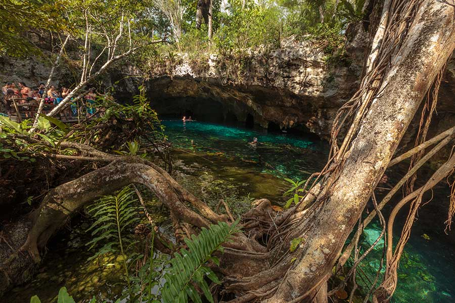 Gran cenote - Tulum - Mexico