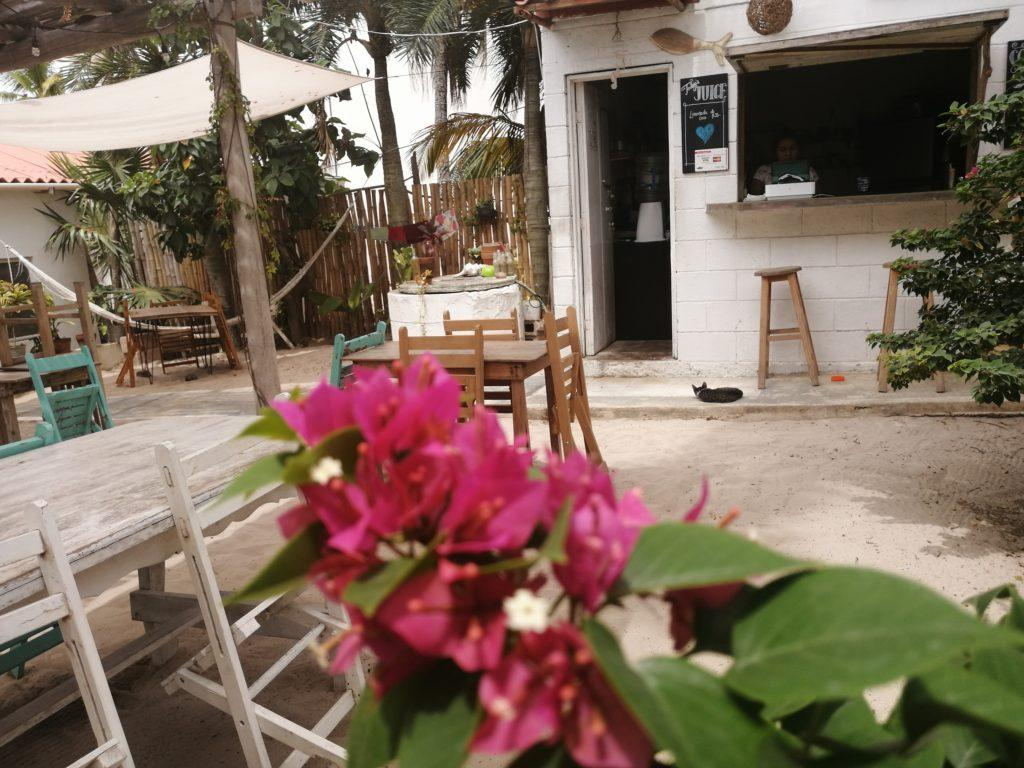 NAIA CAFE' - EL CUYO
