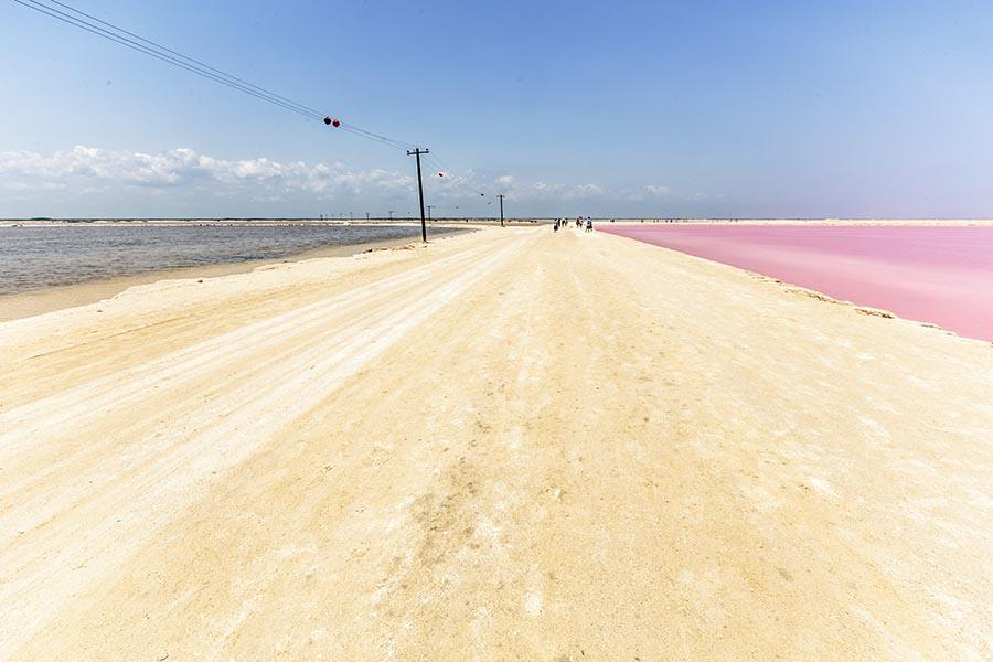 a dirt road in the middle of the pink salt lakes ponds
