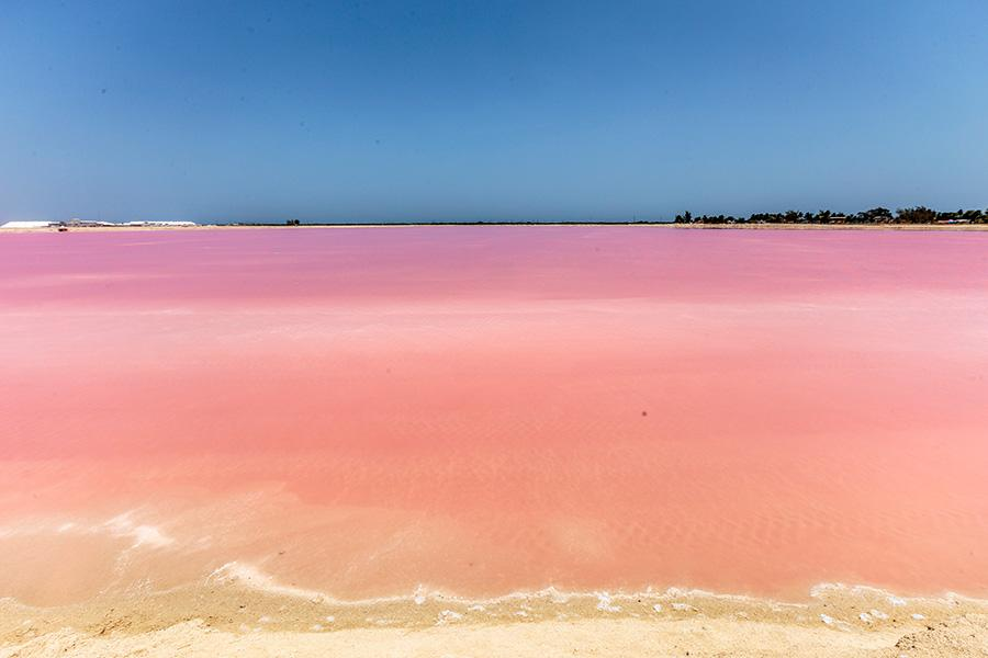 pink artificial pools and beige sand