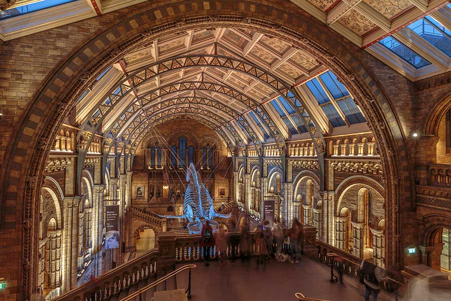 museums of natural history