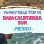 PIN BAJA CALIFORNIA SUE