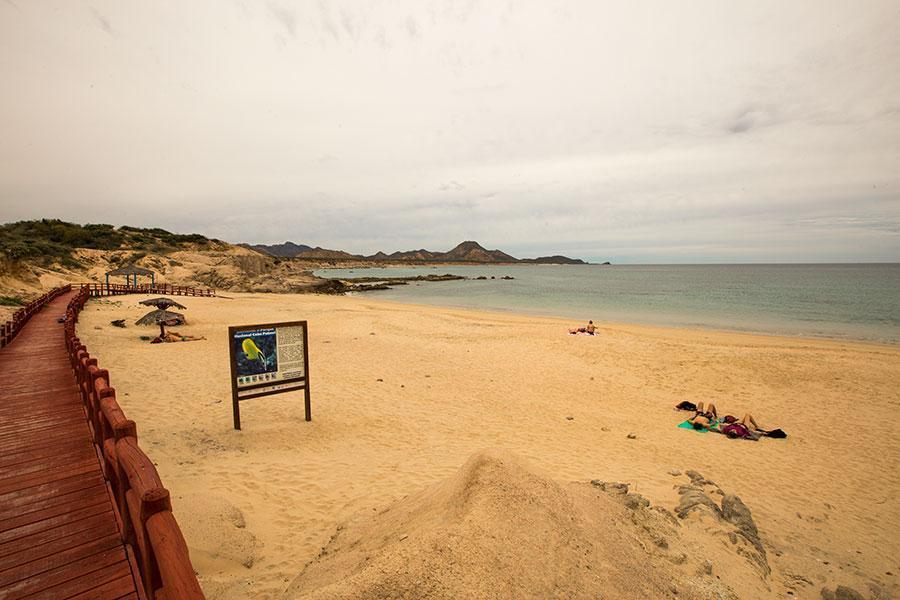 Playa El Arbolito