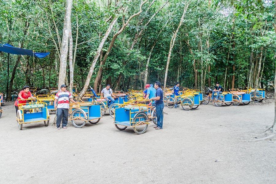 cart in coba