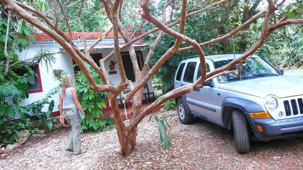 car by a bungalow