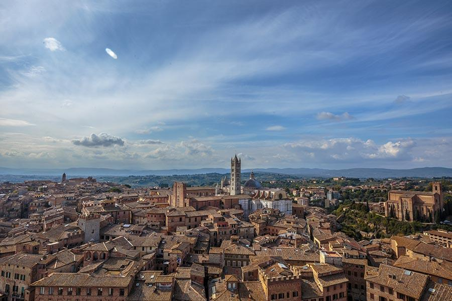 Siena from the tower