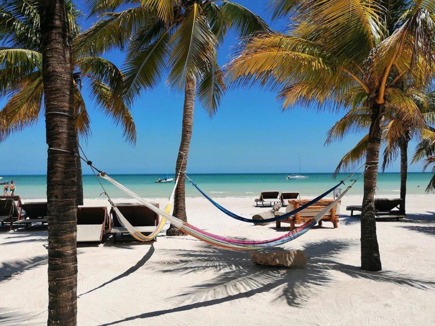 beach with hammocks and palms