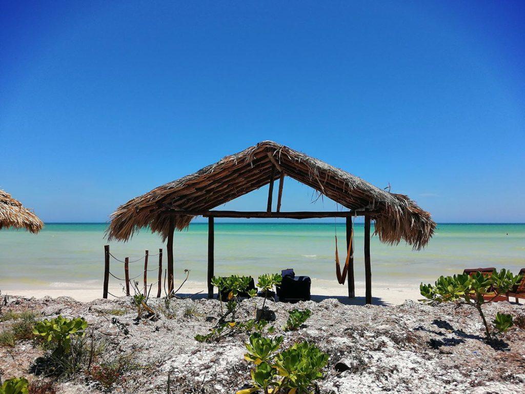 palapa on the beach holbox