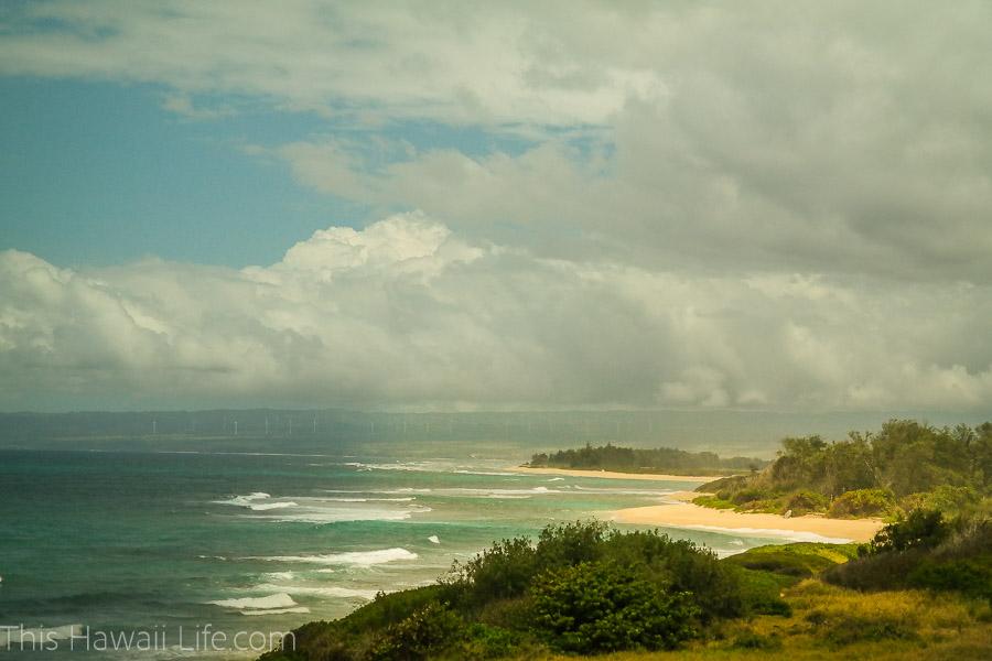 Beautiful beach with crashing waves and lush vegetation
