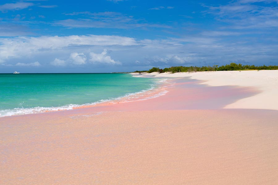 Pink sand beach and turquoise water on Barbuda
