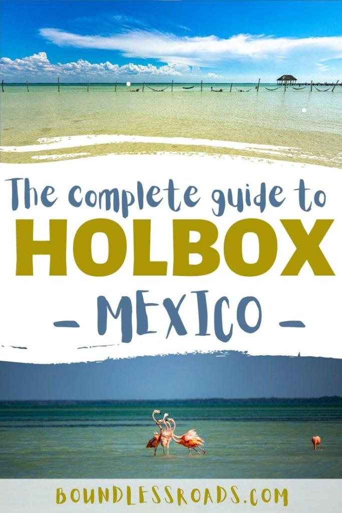 holbox guide pin