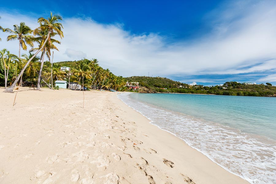 Deserted beach with palm trees white sand and turquoise water