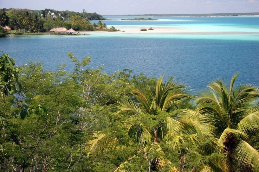 Blue lagoon with palm trees in the front