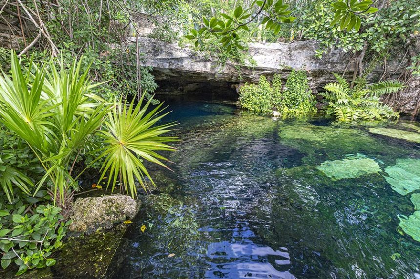 emerald green sinkhole surrounded by tropical vegetation