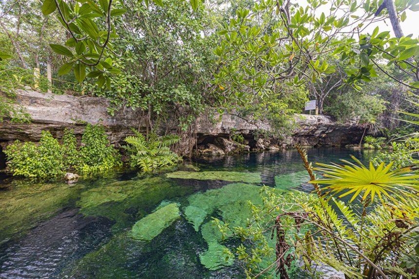 cenote cristalino - day trips from Tulum