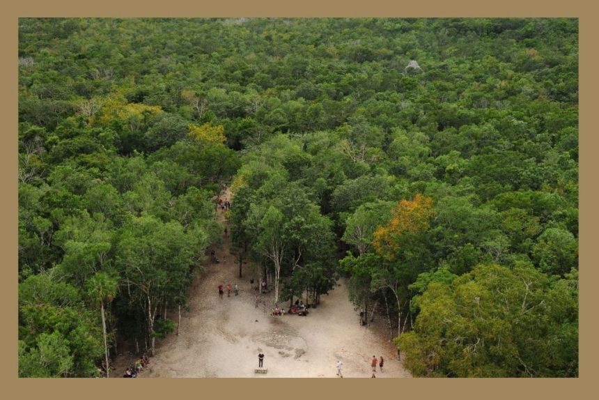 view from the top of the coba pyramid