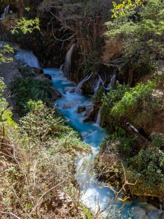 river surrounded by lush vegetation and waterfalls