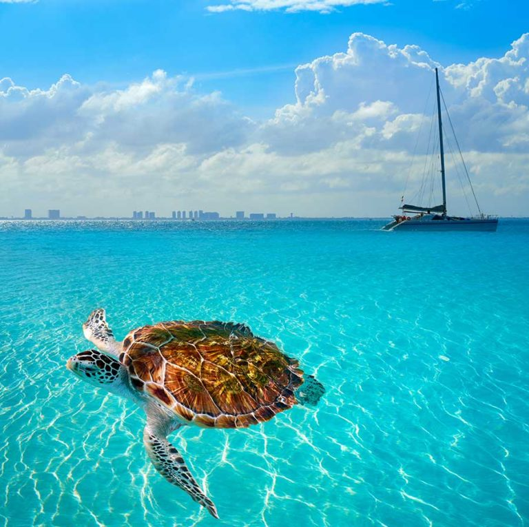 A day trip to Isla Mujeres Mexico – choose among 4 amazing options
