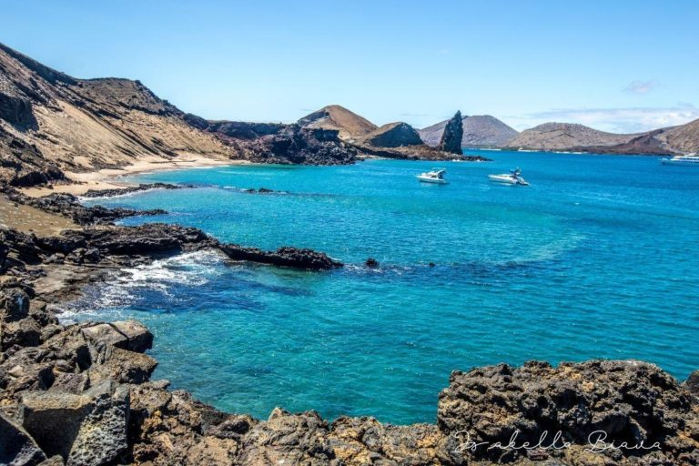 A step by step guide to choosing the best Galapagos cruise