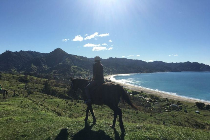 girl on a horse with a bay in the background