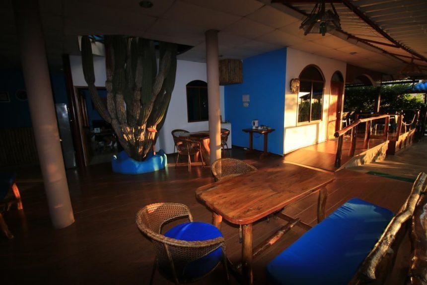 Casa Playa Mann Hotel lobby