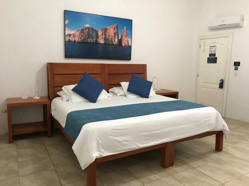 hotel albemarle room