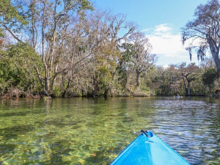 blue spring park on a kayak. Orlando florida