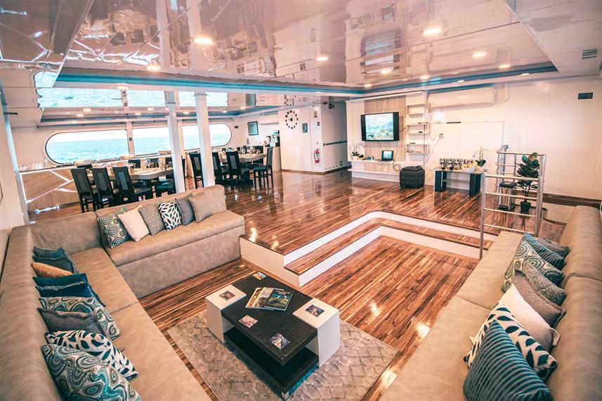 petrel luxury lounge