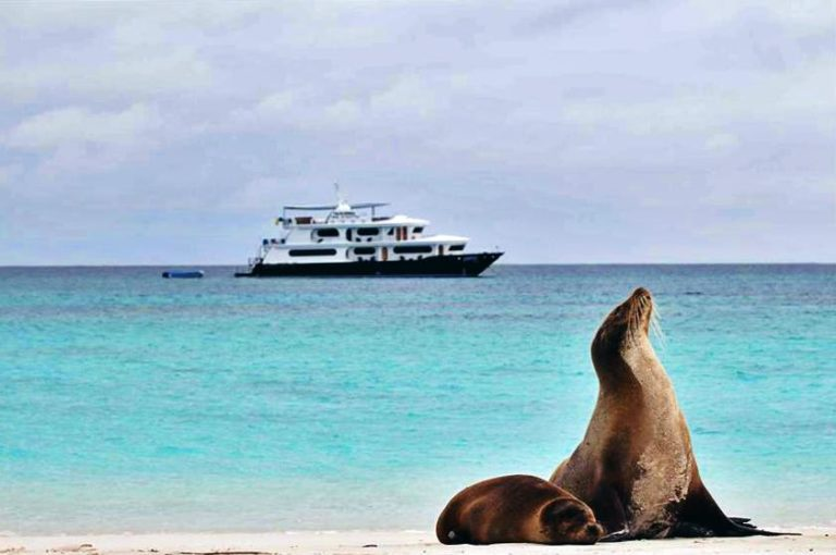 The top 5 Galapagos Luxury cruises for the ultimate Galapagos Islands vacation
