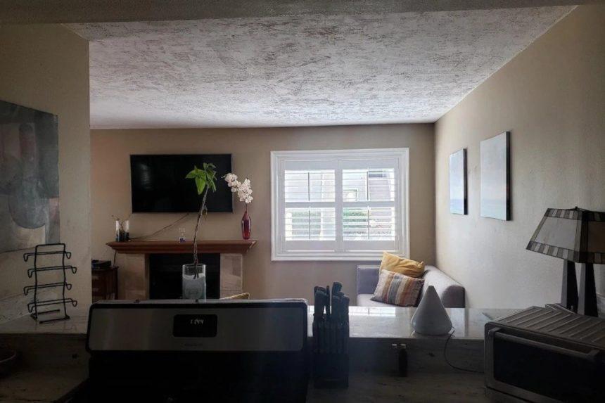 HB hideaway sofa - Orange County