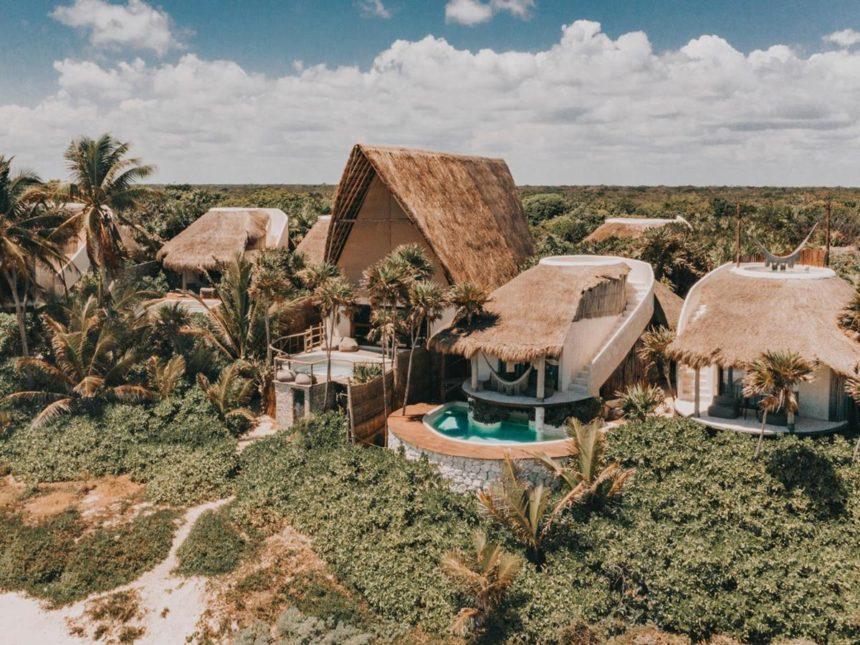 Papaya Playa Project view of the jungle