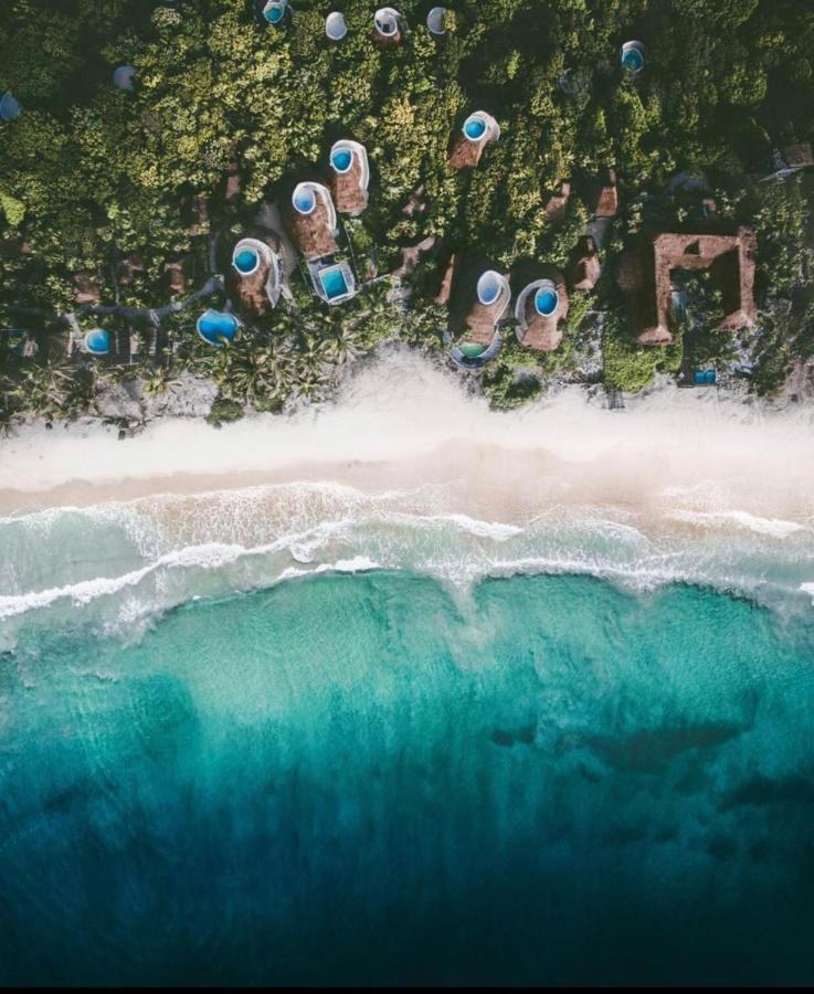 Papaya Playa overview