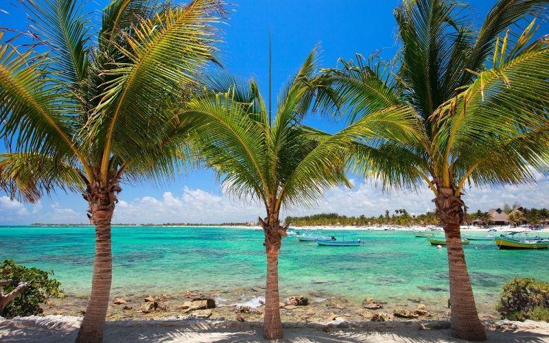 Akumal Beach Rocky with palm trees