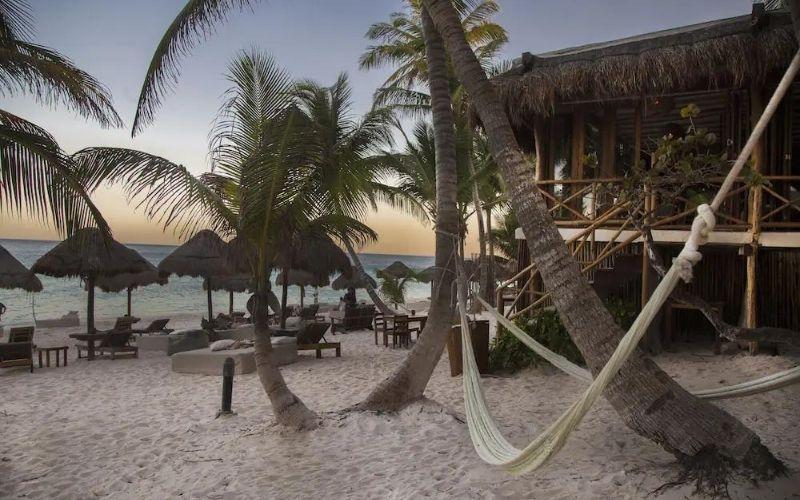 hammock on a beach by a restaurant