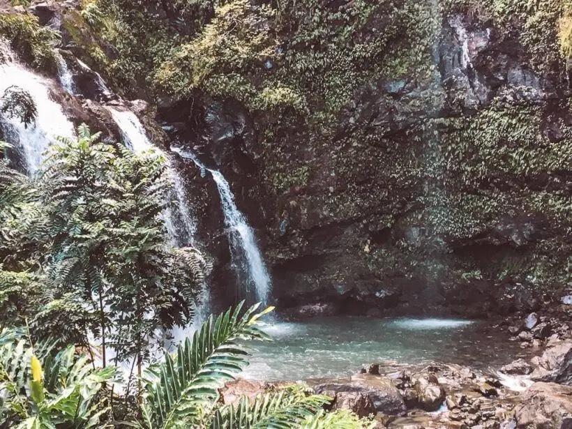 waterfall in Maui- Hawaii