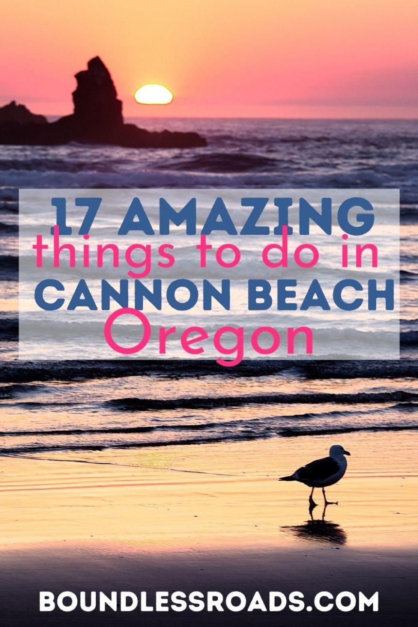 Cannon beach at sunset - a bird on the beach
