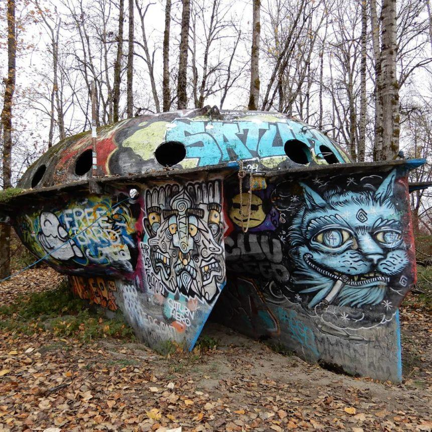 UFO in Collins Beach Portland USA