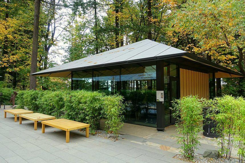 Umami cafe- in the japanese garden in portland