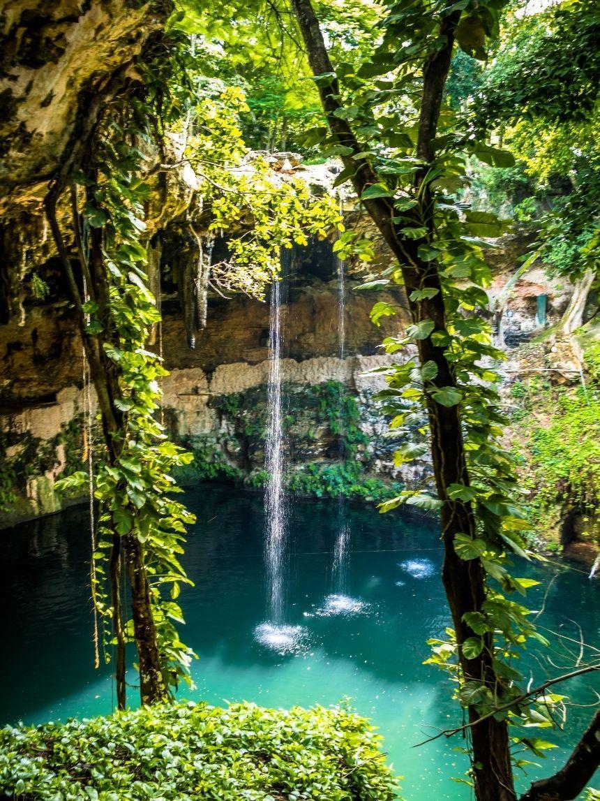 cenote surrounded by lush vegetation