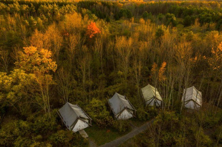 firelight camp overview
